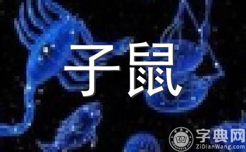 生肖鼠2012龙年财运